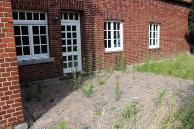 Auch die Terrasse war mit Unkraut bewachsen...